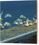 Psychedelic Gulls Wood Print