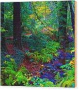 Psychedelicosmic Creek On Mt Tamalpais Wood Print