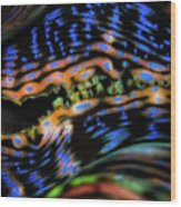 Psychedellic Clam Wood Print
