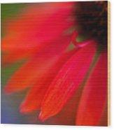 Psychedlia Wood Print