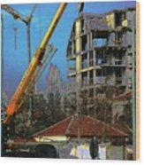 Psycho Plovdiv Crane Wood Print