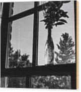 Pt 2 Flowers On A Windowsill Wood Print