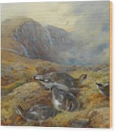 Ptarmigan Danger Aloft By Thorburn Wood Print