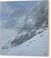 Ptarmigan Lake - Glacier National Park Wood Print
