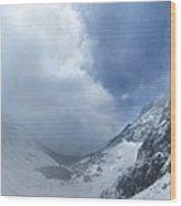 Ptarmigan Pass South Approach - Glacier National Park Wood Print