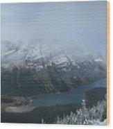 Ptarmigan Trail Overlooking Elizabeth Lake 3 - Glacier National Park Wood Print