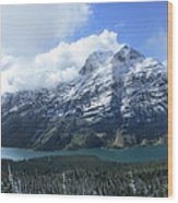 Ptarmigan Trail Overlooking Elizabeth Lake 5 - Glacier National Park Wood Print