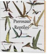 Pterosaur Reptiles Wood Print