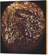 Pucker Up - Grain Of Paradise 40x Wood Print