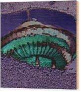 Puddle Needle Wood Print