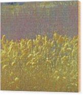 Pueblo Downtown--river Grasses Wood Print