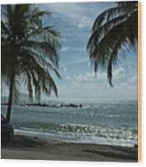 Puerto Rican Beach Wood Print