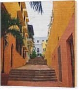 Puerto Rico Ally Way Wood Print