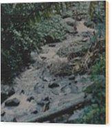 Puerto Rico Water Wood Print