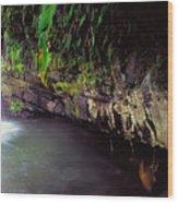 Puerto Rico Waterfall Wood Print
