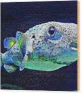 Puffer Fish Wood Print by Jane Schnetlage