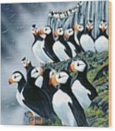 Puffin College Wood Print