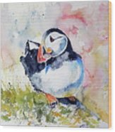 Puffin On Stone Wood Print