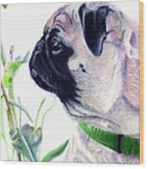 Pug And Nature Wood Print