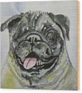 One Eyed Pug Portrait Wood Print