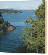Puget Sound Wood Print