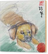 Puggle With Red Ball Wood Print