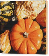 Pumkin And Gourds Wood Print