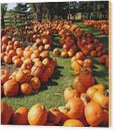 Pumpkin - Happy Thanksgiving Wood Print