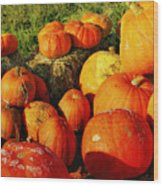 Pumpkin Meeting Wood Print