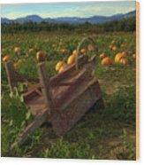 Pumpkin Patch. Wood Print