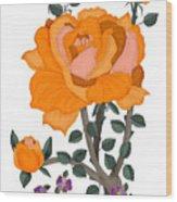 Pumpkin Rose And Violas Wood Print