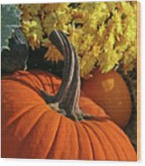 Pumpkin Still Life  Wood Print