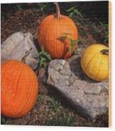 Pumpkins For October  Wood Print