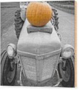Pumpkins For Sale Vermont Wood Print