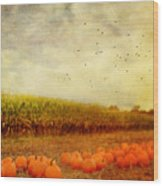 Pumpkins In The Corn Field Wood Print by Kathy Jennings