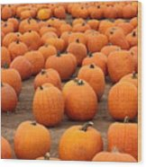 Pumpkins Waiting For Homes Wood Print