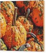 Pumpkins With Warts Wood Print