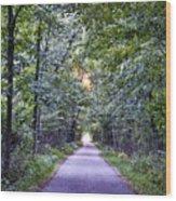 Pumpkinvine Trail In Fall Wood Print