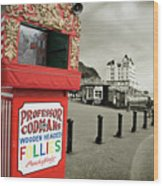 Punch And Judy Theatre On Llandudno Promenade Wood Print