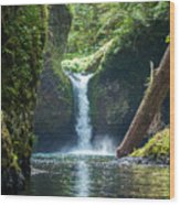 Punch Bowl Falls Wood Print