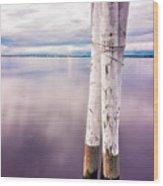 Punta Gorda Bay Wood Print