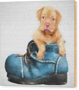 Pup In A Shoe Wood Print