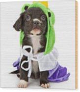 Puppy Frog Prince Wood Print by Susan Schmitz