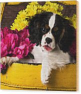 Puppy In Yellow Bucket  Wood Print