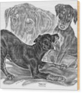 Puppy Love - Doberman Pinscher Pup Wood Print