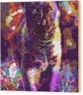 Puppy Sweet Cute Dog Young Animal  Wood Print