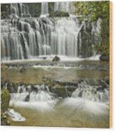 Purakanui Falls Wood Print