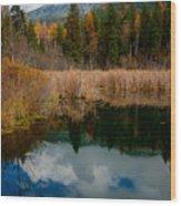 Purcells Reflected Wood Print