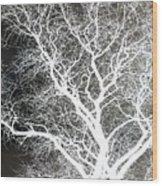 Pure Energy- Lightning Tree Wood Print