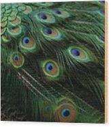 Pure Peacock Wood Print